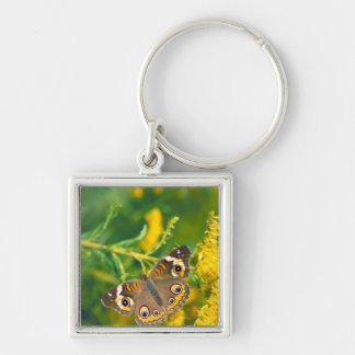 Common Buckeye Butterfly on Goldenrod Keychain