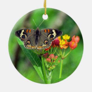 Common Buckeye Butterfly Ornament