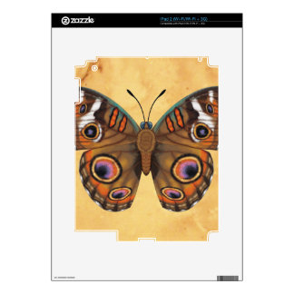 Common Buckeye Butterfly Skins For iPad 2