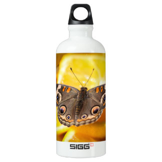 Common Buckeye Junonia Coenia Aluminum Water Bottle