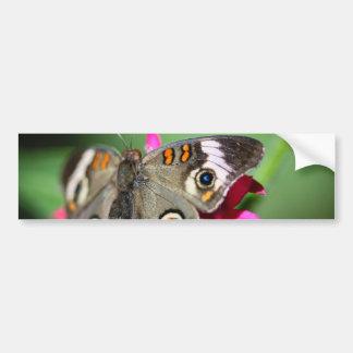 Common Buckeye Junonia Coenia Bumper Sticker