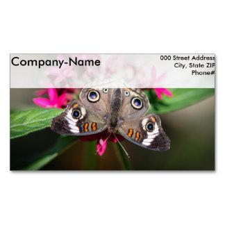 Common Buckeye Junonia Coenia Business Card Magnet