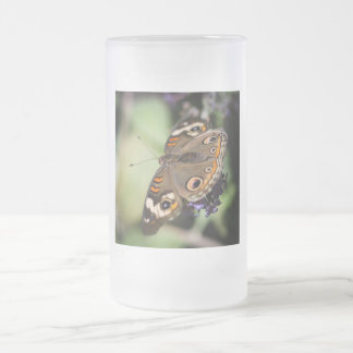Common Buckeye Junonia Coenia Frosted Glass Beer Mug