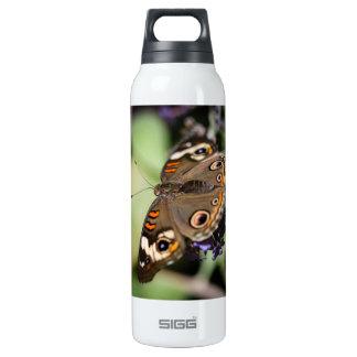 Common Buckeye Junonia Coenia Insulated Water Bottle