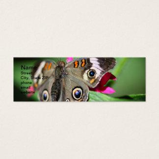 Common Buckeye Junonia Coenia Mini Business Card