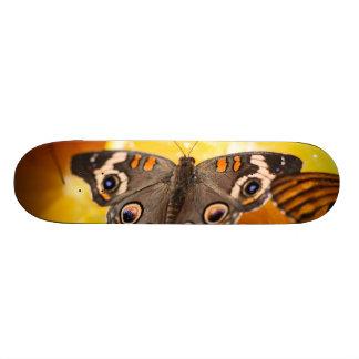 Common Buckeye Junonia Coenia Skate Board
