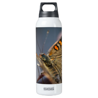 Common Buckeye Junonia Coenia Thermos Bottle