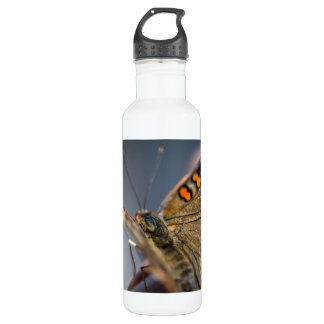 Common Buckeye Junonia Coenia Water Bottle