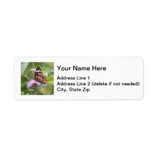 Common Buckeye Label