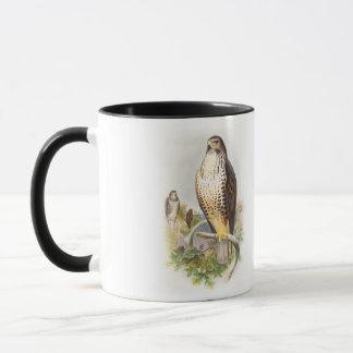 Common Buzzard John Gould Birds of Great Britain Mug