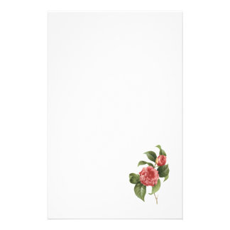 common camellia(Camellia japonica) by Redouté Stationery