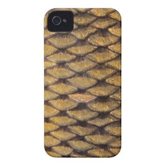 Common Carp - Blackberry Bold iPhone 4 Cover
