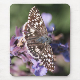 Common Checkered Skipper Mouse Pad