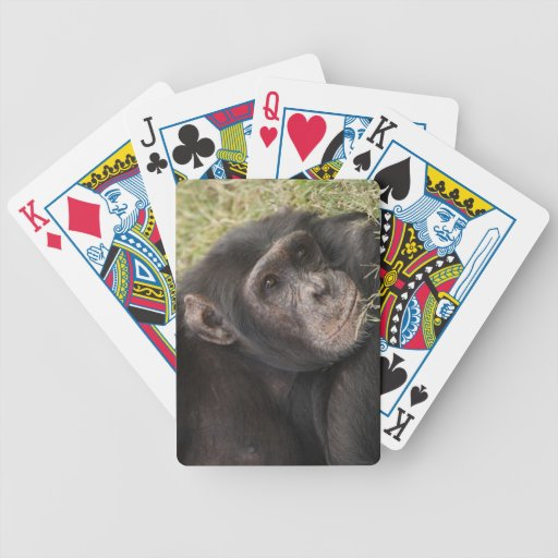 Common Chimpanzee posing resting Bicycle Playing Cards
