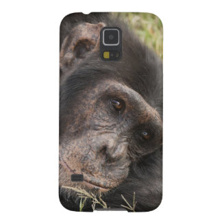 Common Chimpanzee posing resting Case For Galaxy S5