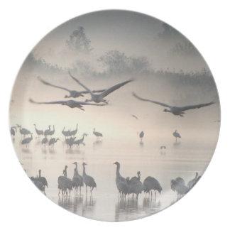 Common Cranes Plate