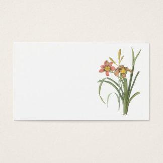 common daylily(Hemerocallis fulva) by Redouté Business Card