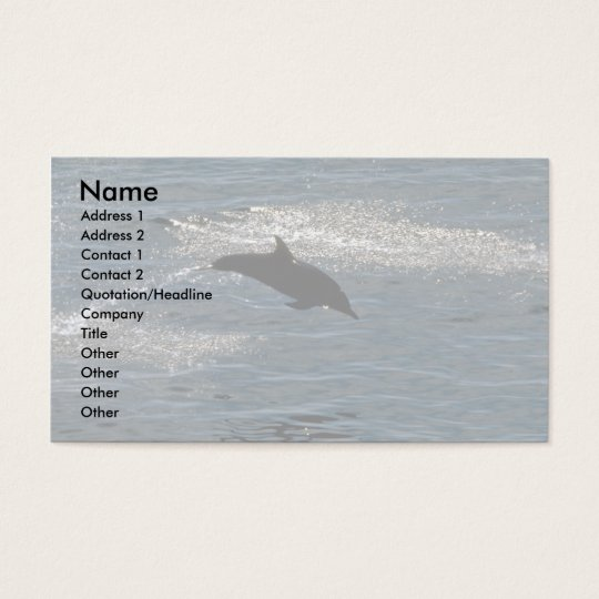 Common dolphin business card