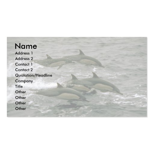 Common dolphin business card templates