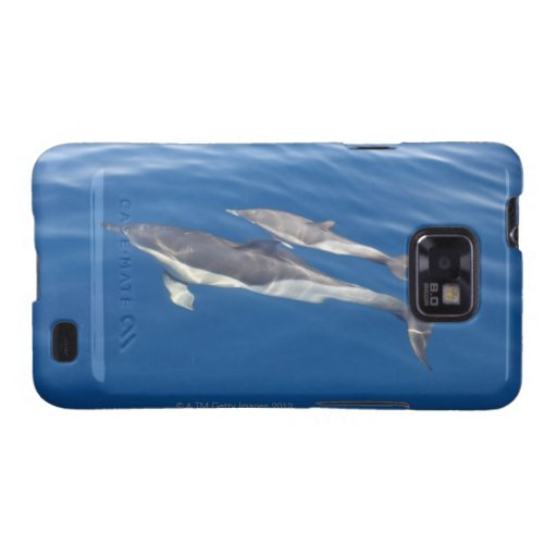 Common Dolphin Samsung Galaxy S2 Cover