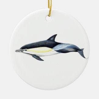 Common dolphin Delphinus delphis Ceramic Ornament
