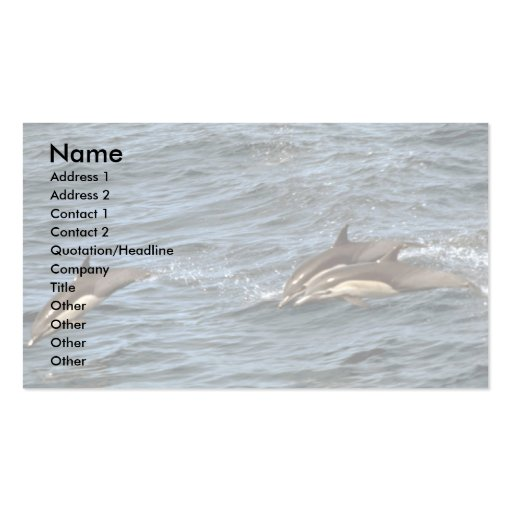 Common dolphin Double-Sided standard business cards (Pack of 100)