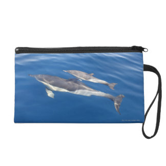 Common Dolphin in the strait Wristlet