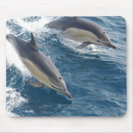 Common Dolphin Mouse Pad