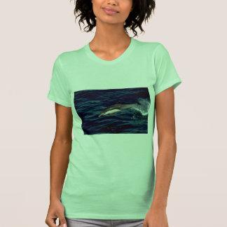 Common dolphin T-Shirt