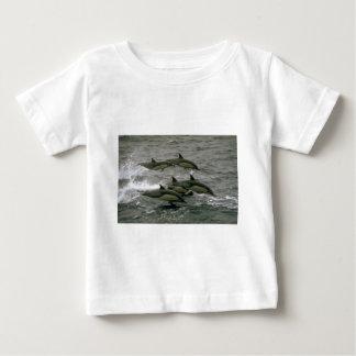 Common dolphin tee shirt