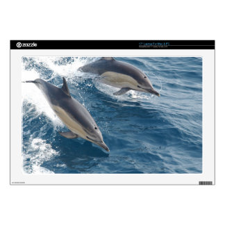 "common-dolphins-914 17"" laptop decal"