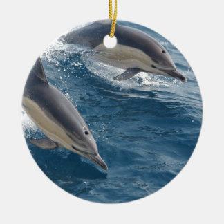 common-dolphins-914 ceramic ornament