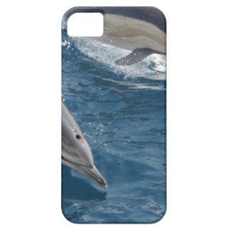 common-dolphins-914 iPhone SE/5/5s case