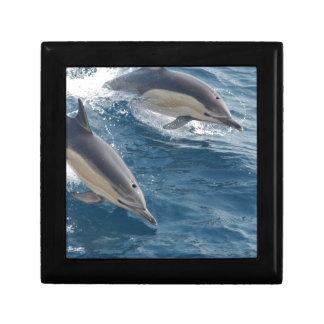 common-dolphins-914 jewelry box