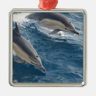 common-dolphins-914 metal ornament