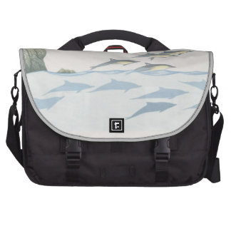 Common Dolphins Laptop Computer Bag