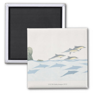 Common Dolphins 2 Inch Square Magnet