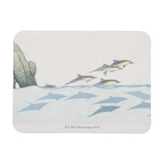 Common Dolphins Rectangular Photo Magnet