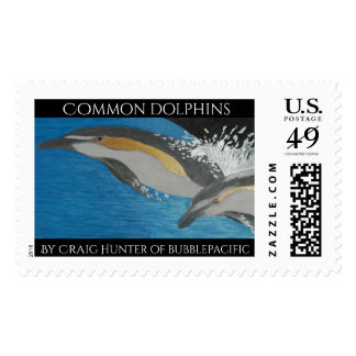 Common dolphins stamp
