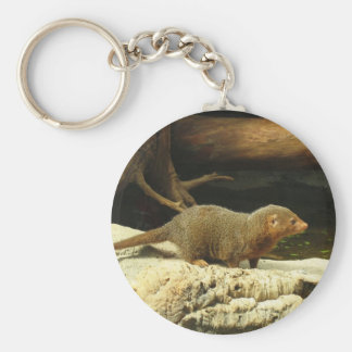 Common Dwarf Mongoose photo keychain