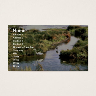 Common Egret Business Card