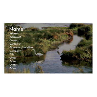 Common Egret Double-Sided Standard Business Cards (Pack Of 100)
