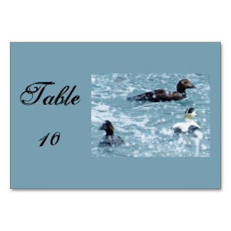 Common Eider Are Waiting Out A Rain Shower Table Cards