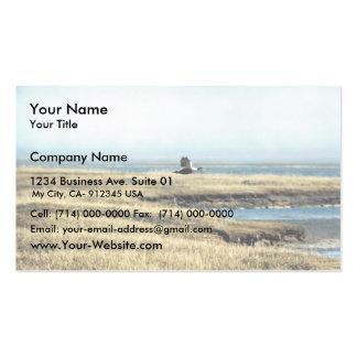 Common Eider Business Card