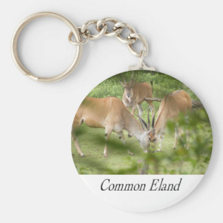 Common Eland Keychains