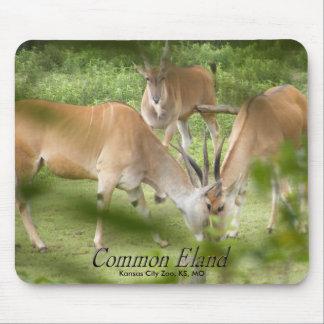 Common Eland Mouse Pad