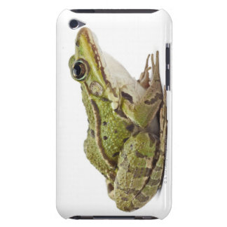 Common European frog or Edible Frog iPod Touch Case-Mate Case