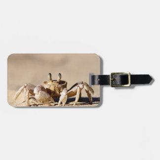 Common Ghost Crab (Ocypode Cordimana) Bag Tag