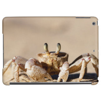 Common Ghost Crab (Ocypode Cordimana) iPad Air Case
