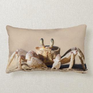 Common Ghost Crab (Ocypode Cordimana) Pillow